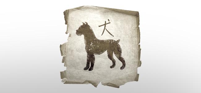 Sternzeichen Hund Horoskop