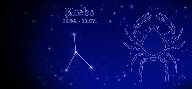 Krebs 2011